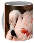 The Shy Flamingo Coffee Mug