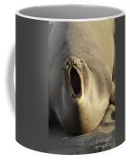 The Singing Seal Coffee Mug
