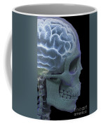 The Skull And Brain Coffee Mug