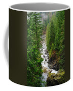 The Snowqualmie River Coffee Mug