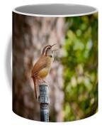 The Songbird Coffee Mug