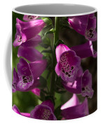 The Splendor Of Foxgloves Coffee Mug