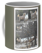 The Stallion Lives In The Country Coffee Mug by Patricia Keller