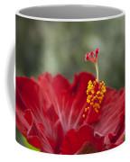 The Star Of Dawn Coffee Mug