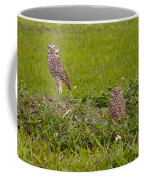 The Stares Of The Burrowing Owls Coffee Mug