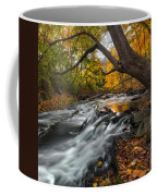 The Still River Square Coffee Mug by Bill Wakeley