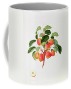 The Tartarian Crab Apple Coffee Mug by William Hooker