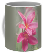 The Temple Tree Coffee Mug