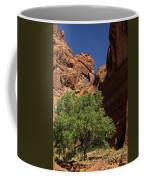 The Tree And The Window Coffee Mug