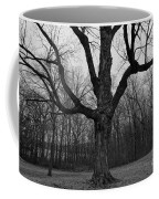 The Tree In The Park Coffee Mug