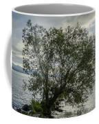The Tree With His Feet In Water Coffee Mug