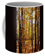 The Trees Through The Forest Coffee Mug