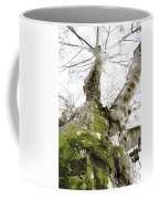 The Trunk Coffee Mug
