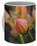 The Tulip Bud Coffee Mug