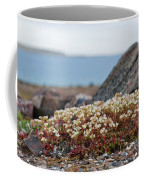 The Tundra... Coffee Mug