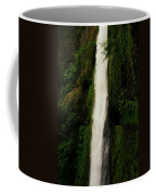 The Tunnel Behind Tunnels Falls Coffee Mug