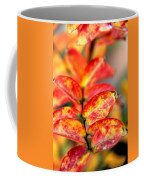 The Turning Season Coffee Mug