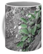 The Untouchable Plant Coffee Mug