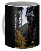 The View From Cispus Coffee Mug