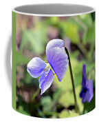 The Violet Coffee Mug by Susan Leggett