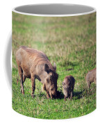 The Warthog Family On Savannah In The Ngorongoro Crater. Tanzania Coffee Mug