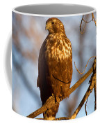 The Watcher In The Woods Coffee Mug