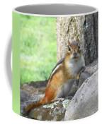 The Watching Chipmunk Reclines Coffee Mug