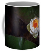 The Water Lily Coffee Mug