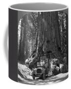 The Wawona Giant Sequoia Tree Coffee Mug