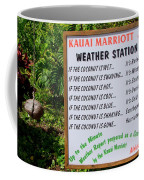 The Weather Report Coffee Mug