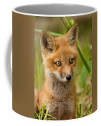 The Wild Pup Coffee Mug