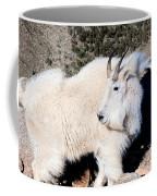 The Wind On The Mountain Coffee Mug