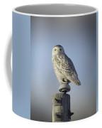 The Wise Snowy Owl Coffee Mug