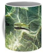 The Wishing Fish Coffee Mug