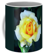 The Yellow Rose Palm Springs Coffee Mug