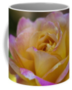 There's Nothing Like The Beauty Of A Rose  Coffee Mug