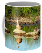 These Ducks Rock Coffee Mug