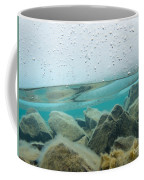 Thick Ice Sheet Underwater Over Rocky Lake Bottom Coffee Mug