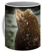 Things Are Looking Up-sealion Coffee Mug