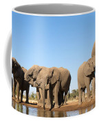Thirsty Elephant Herd Coffee Mug