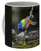 Thirsty Painted Bunting Coffee Mug