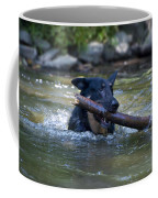 This Dog Loves To Play Fetch Coffee Mug