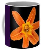 This Orange Lily Coffee Mug