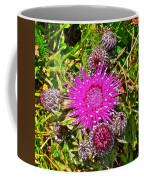 Thistle In Saint Mary's Ecological Reserve-newfoundland Coffee Mug