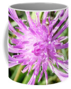 Thistle In Umbria Coffee Mug