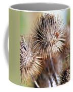 Thistle Seedheads Coffee Mug