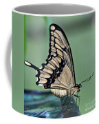 Thoas Swallowtail Butterfly Coffee Mug