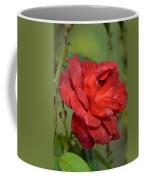 Thorny Red Rose Coffee Mug
