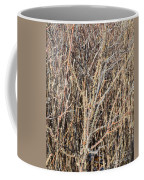 Thorny Wall Coffee Mug