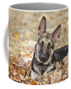 Those Ears Coffee Mug